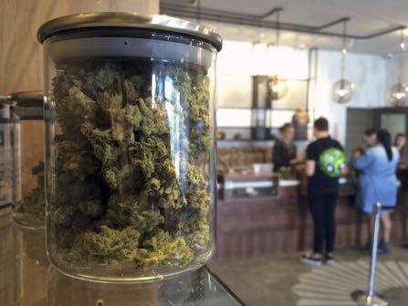 File - In this April 20, 2016 file photo, customers buy products at the Harvest Medical Marijuana Dispensary in San Francisco. California's lopsided U.S. Senate is nearing a historic end and voters are pondering a long list of ballot questions that could legalize marijuana, end the death penalty and slap cigarette smokers with a $2-a-pack tax increase. (AP Photo/Haven Daley, File)