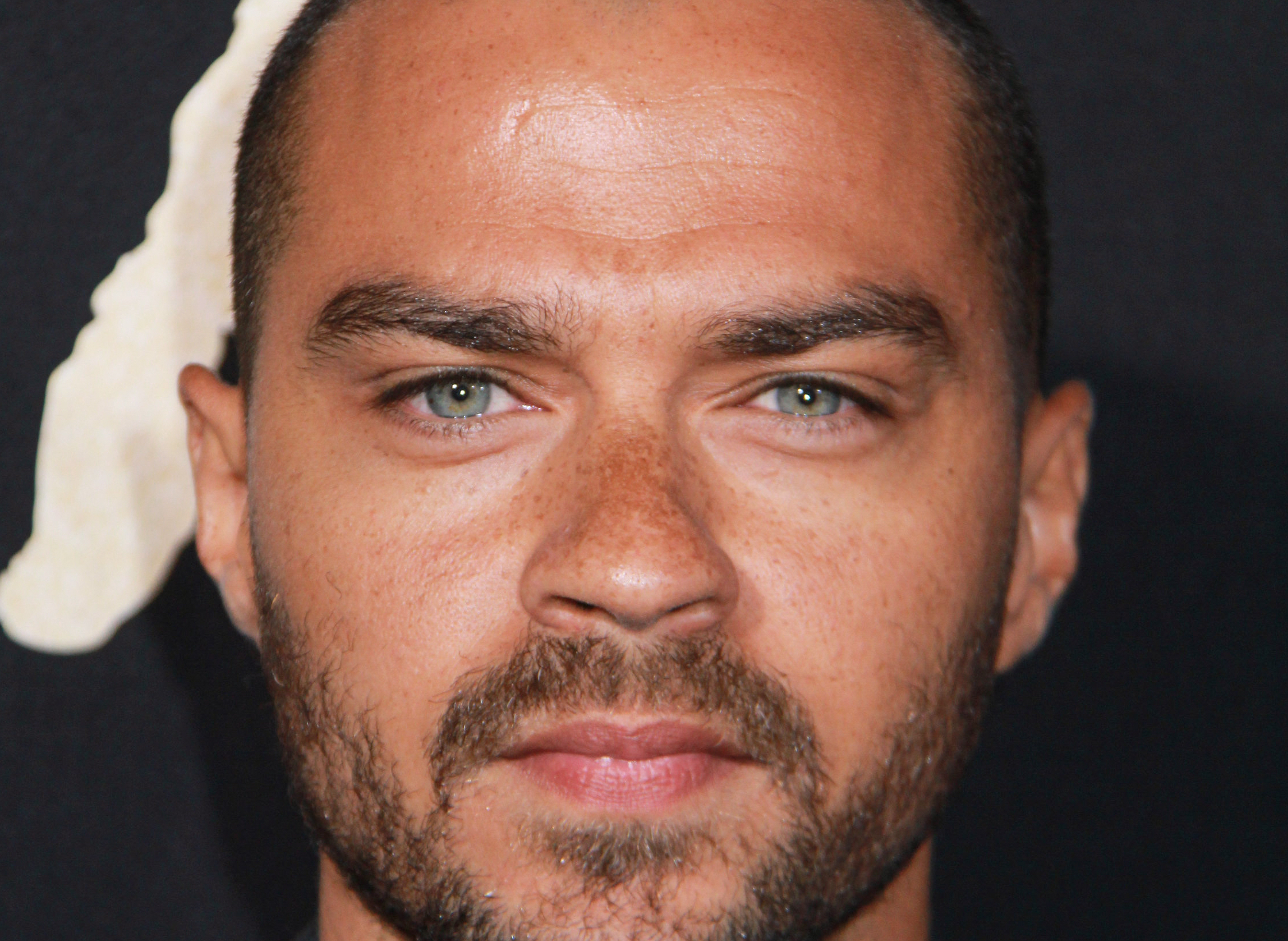 "09/21/2016 - Jesse Williams - ""The Birth of a Nation"" Los Angeles Premiere - Inside Arrivals - ArcLight Cinemas Cinerama Dome, 6360 Sunset Boulevard - Los Angeles, CA, USA - Keywords: Vertical, Fox Searchlight Pictures, Biography, Drama, Film Premiere, Movie Premiere, Person, People, Celebrity, Celebrities, Portrait, Photography, Red Carpet Event, Arts Culture and Entertainment, Attending, Hollywood, California Orientation: Portrait Face Count: 1 - False - Photo Credit: Izumi Hasegawa / PRPhotos.com - Contact (1-866-551-7827) - Portrait Face Count: 1"